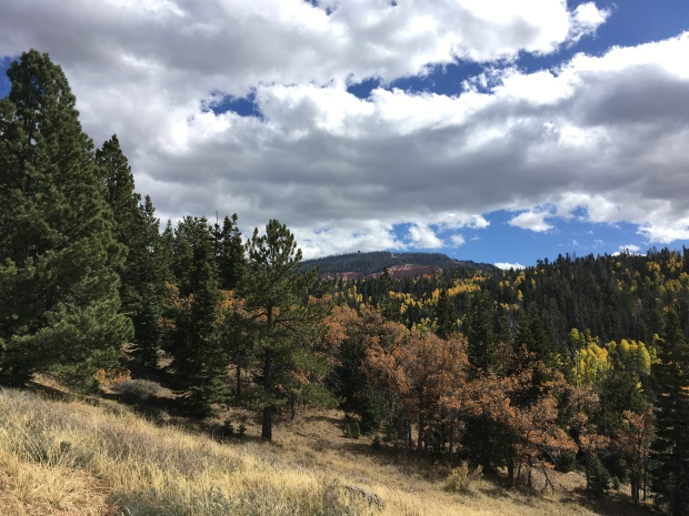 durango_woodsranch_iphone-245
