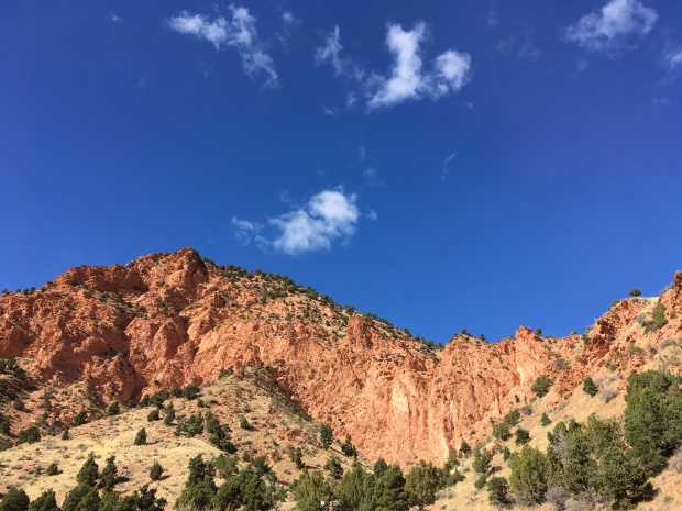 2016-11-01-redcanyon_watercanyon_iphone-113