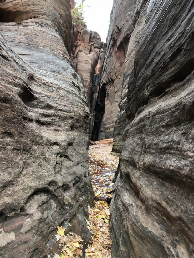 2016-11-01-redcanyon_watercanyon_iphone-132