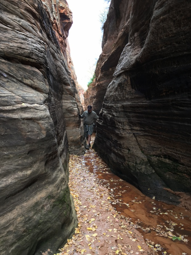 2016-11-01-redcanyon_watercanyon_iphone-136