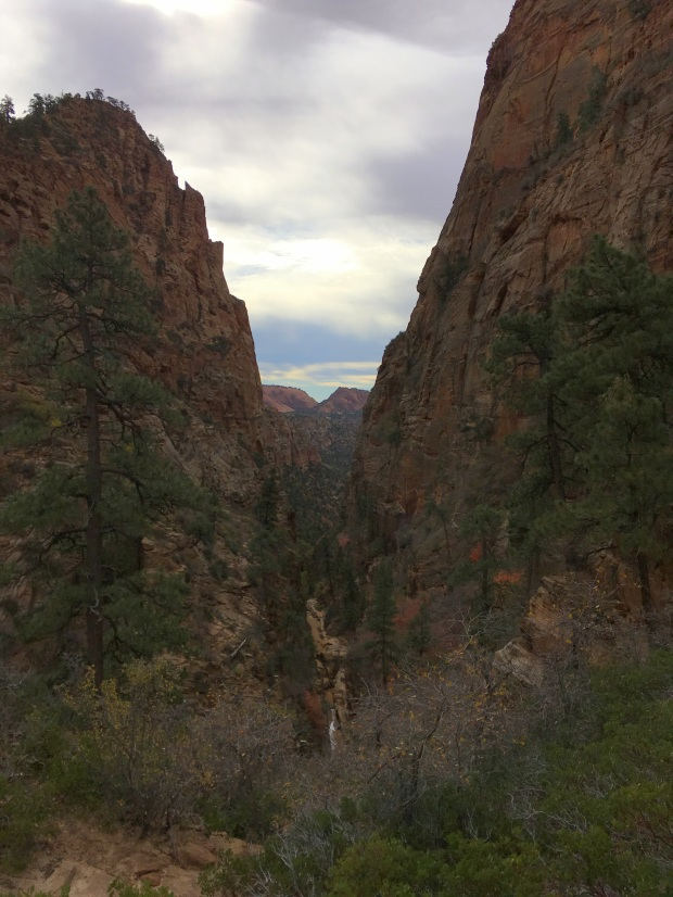 2016-11-01-redcanyon_watercanyon_iphone-150