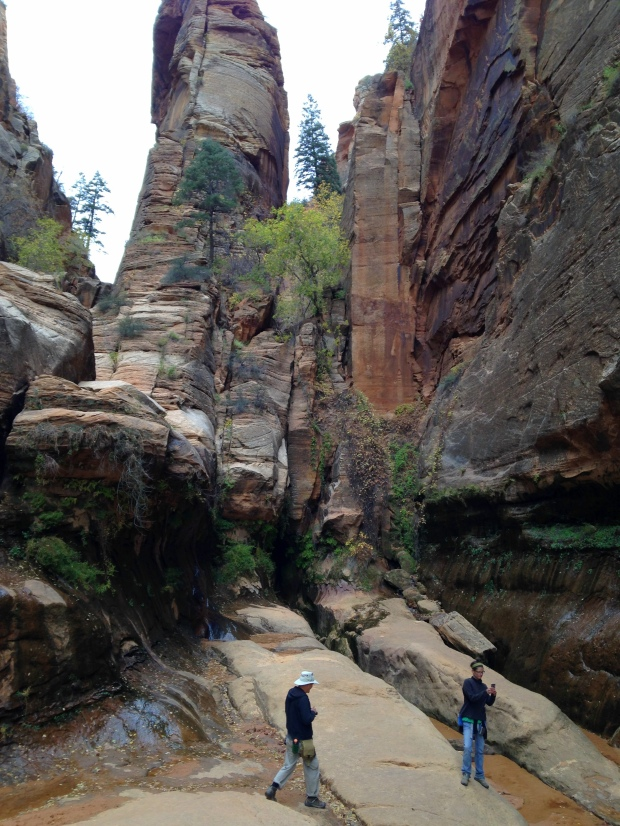 2016-11-01-redcanyon_watercanyon_iphone-175