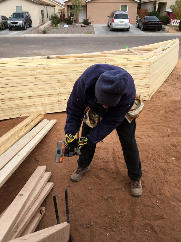 Lee pounding stakes into the ground while we work on bracing the walls