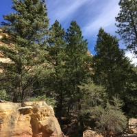Exploring Second Left Hand Canyon