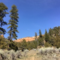 Hiking in Proctor Canyon
