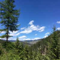 Two Hikes in the National Forests of Western Montana