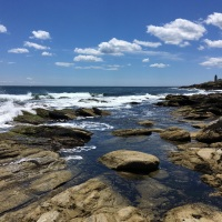 Rocks and Waves at Beavertail State Park