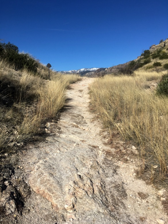 A Hike in the Santa Catalina Mountains and an Inadequate