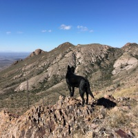 The Usual: Photo Roundup of Hikes in the Mesilla Valley