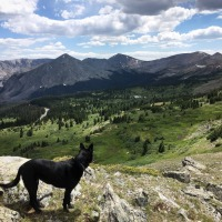 Drive Up Cottonwood Pass and Family Days in Evergreen